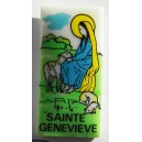 Pin's Gendarmerie Nationale - Sainte Geneviève (2)